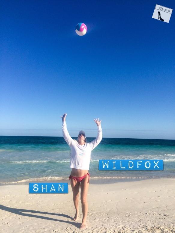 wildfox2